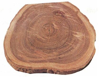 Cómo usar un torno de madera: 19 pasos con fotos -